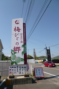 "There is ""plum bitono volost"" along Route 414"